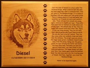 Agility - Memorial Plaque - Diesel