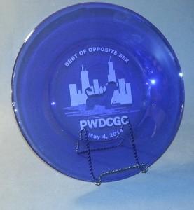 Agility - Plates - PWDCGC BOOS