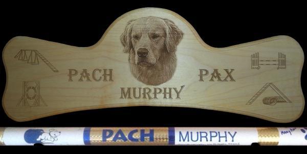 Agility - MACH Bar - Murphy
