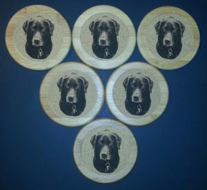 Agility - Coasters - Godiva