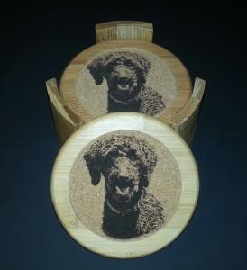 Agility - Coasters - Poodle 1