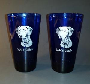 Agility - Pint Glasses - MACH3 Bela