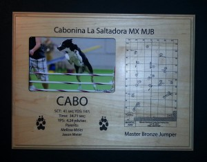 Agility - Title Plaque - Cabo 2