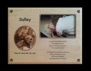 Sulley - Memorial Plaque